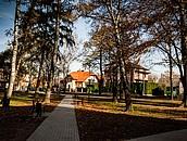 Zabytkowy park w Dębicy zdj. 8