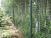 Montaż siatki ogrodzeniowej zdj. 1