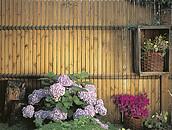 Przesłony - alternatywa dla ogrodzenia drewnianego zdj. 2