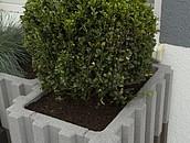 Nowoczesne kwietniki ogrodowe z betonu zdj. 4