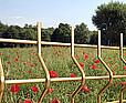 WIŚNIOWSKI Panele ogrodzeniowe kratowe VEGA B