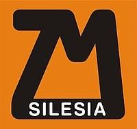 Znalezione obrazy dla zapytania silesia rynny logo