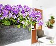 GREENARTE Ogród kieszonkowy - nowość od Greenarte® 2012