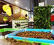 GREENARTE Targi – Gardenia – 02.2012r. Poznań