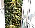 GREENARTE Oxygen Park - zielone płuca warszawskiego biurowca