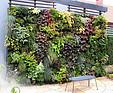 GREENARTE Zewnętrzna zielona ściana w ogrodzie prywatnym