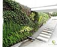GREENARTE Zewnętrzna zielona ściana z zielonym dachem