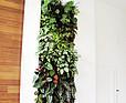 Zielona ściana w domu prywatnym